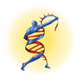 STID Logo